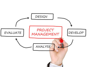Project manager resume objective
