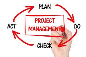 Management resume objective